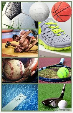 Sports Affecting Seniors