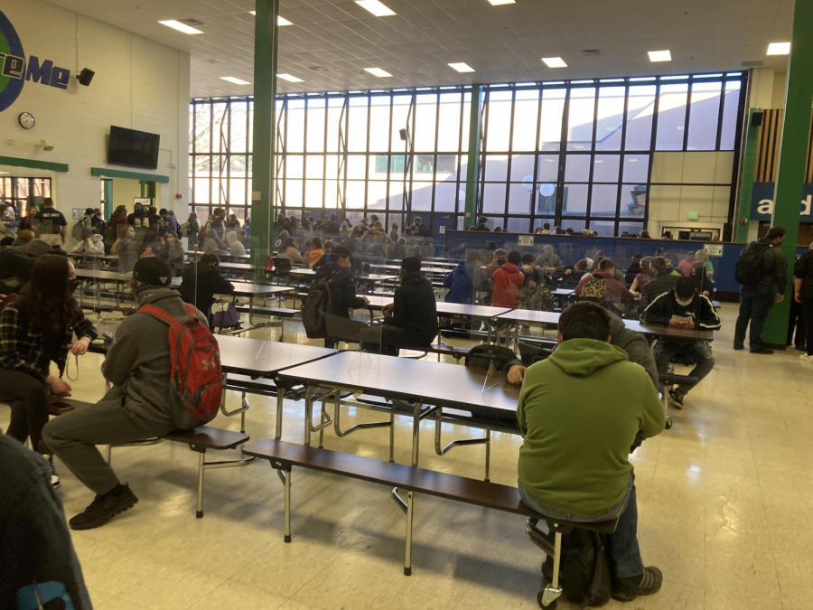 Students who've returned to learning gather in the cafeteria